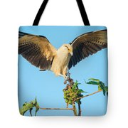 Yellow-headed Caracara Milvago Tote Bag