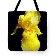 Yellow Iris After The Rain Tote Bag