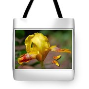 Yellow Iris And Butterfly Tote Bag