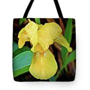Yellow Iris At Pilgrim Place In Claremont-california Tote Bag