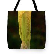 Yellow Iris Bud Tote Bag