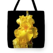 Yellow Iris Flower Still Life Tote Bag