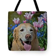 Yellow Lab And Tulips Tote Bag