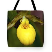 Yellow Lady's Slipper 3 Tote Bag