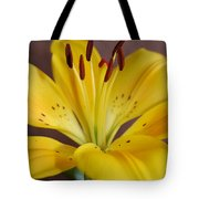 Yellow Lily 2 Tote Bag