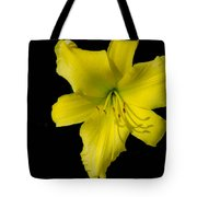 Yellow Lily Flower Black Background Tote Bag