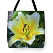 Yellow Lily Longwood Gardens Tote Bag