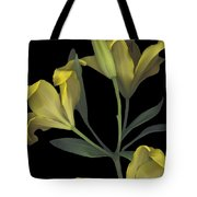 Yellow Lily On Black Tote Bag