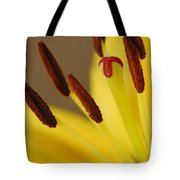 Yellow Lily Reach 2 Tote Bag