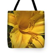 Yellow Lily Shines Brightly  Tote Bag