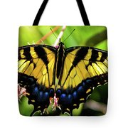 Yellow Monarch Butterfly On Milkweed #2 Tote Bag