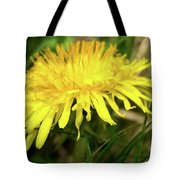 Yellow Mountain Flower's Petals Tote Bag