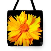 Yellow Mum On Black Background Tote Bag