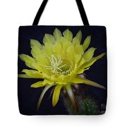 Yellow Night Blooming Cactus  Tote Bag