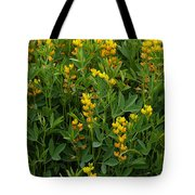 Yellow Pea 1 Tote Bag