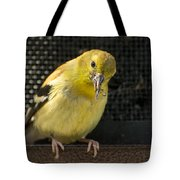 Lesser Female Goldfinch Having Lunch Tote Bag