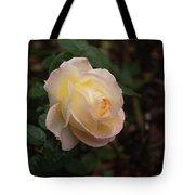 Yellow/pink Rose Tote Bag