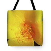 Yellow Poppy With Rain Tote Bag
