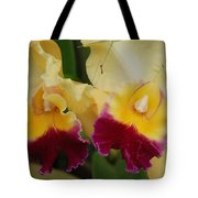Yellow Purple Orchids Tote Bag