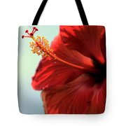 Yellow Red And Coral Hibiscus Profile Tote Bag