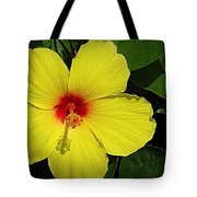Yellow Red Hibiscus Tote Bag