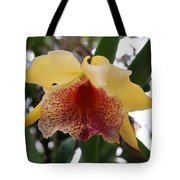 Yellow Red Orchid Tote Bag