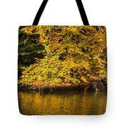 Yellow Reflection2 Tote Bag