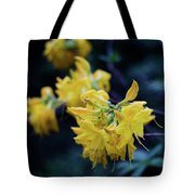Yellow Rhododendron Flower Tote Bag