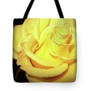 Yellow Rose For Friendship Tote Bag
