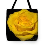 Yellow Rose  - Friendship,joy,good Health Tote Bag