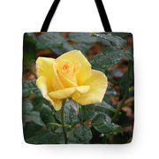 Yellow Rose In The Rain Tote Bag