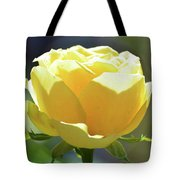 Yellow Rose In The Sun Tote Bag