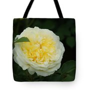 Yellow Rose Of Texas Too...   # Tote Bag
