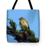 Yellow-rumped Warbler On Cedar Bough Tote Bag