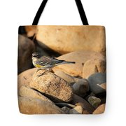 Yellow Rumped Warbler On River Rocks Tote Bag