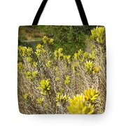 Yellow Sage Flower Tote Bag