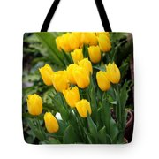 Yellow Spring Tulips Tote Bag
