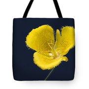 Yellow Star Tulip - Calochortus Monophyllus Tote Bag