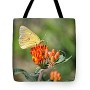 Yellow Sulphur Butterfly Tote Bag