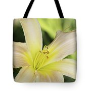 Yellow Tan Lily 1 Tote Bag by Roger Snyder