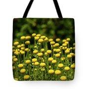Yellow Tansy Tote Bag