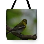 Yellow-throated Vireo On Branch Tote Bag