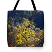 Yellow Tree In Sunlight Tote Bag