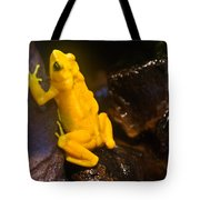 Yellow Tropical Frog Tote Bag