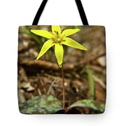 Yellow Trout Lily 1 Tote Bag