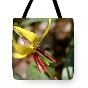 Yellow Trout Lily Tote Bag