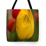 Yellow Tulip Tote Bag