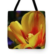 Yellow Tulip Blossom Streaked  With Red In The Spring Tote Bag