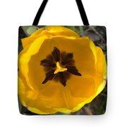 Yellow Tulip Head     Spring   Indiana Tote Bag