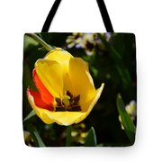 Yellow Tulip With Red Stripe Tote Bag